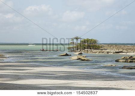 Carneiros beach in Porto de Galinhas Recife Pernambuco - Brazil