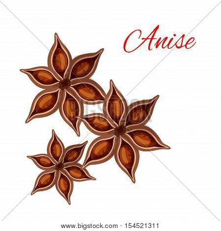 Anise. Vector isolated icon of spice plant anise, aniseed. Aroma food ingredient, condiment emblem for anise spice packaging design, cuisine menu card decoration, grocery shop, food market tag
