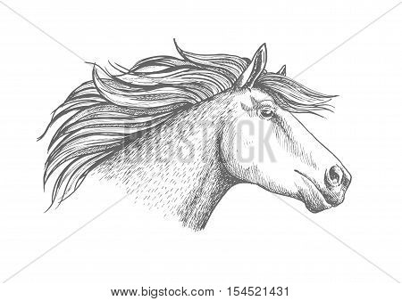 Horse head sketch sport emblem. Proud white mustang trotter racing fast. Equine stallion label for horse racing club, hippodrome
