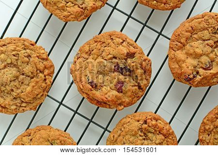 Fresh baked oatmeal raisin walnut cookies on black cooling rack shot from overhead in horizontal format
