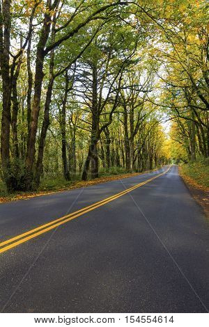 Historic Columbia River Highway at Columbia River Gorge Oregon in Fall Season