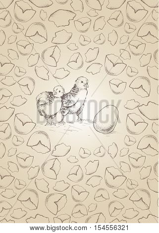 Chick peeking out of shell eggs sketch illustration for print, infographics, greeting card, poster. Texture of shell eggs. Hand drawn chick picture. Chicken vector image. Vintage engraving style