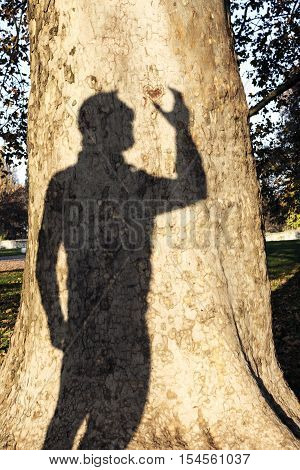 Mans Shadow On A Tree Trunk