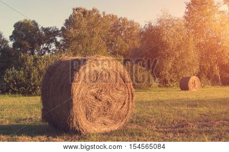 Hay Bale On Meadow