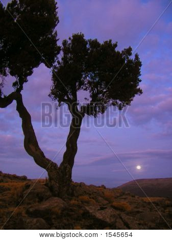 Dusk High In The Simien Mountains, Ethiopia