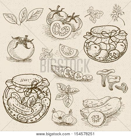 Set of chalk sketch hand drawn, in sketch style, food and spices, old paper textured background. Pickles in the jar, dill, cucumber, tomato, garlic, bay leaf. Hand drawn vector illustration.