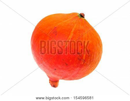 Red Kuri Squash - Orange Hokkaido Pumpkin Isolated On White