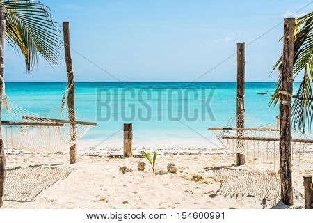 beautiful view of palm and hammocks on Zanzibar beach with blue sky and ocean on the background
