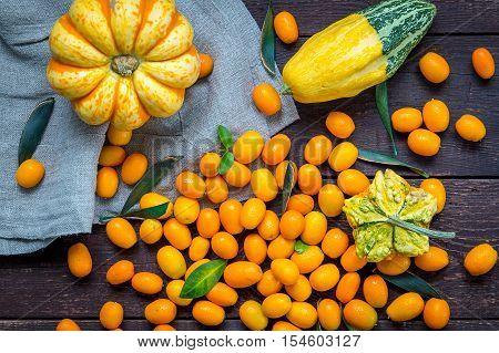 Pumpkins and Kumquats on Dark Wooden Table, Autumn Concept, Top View