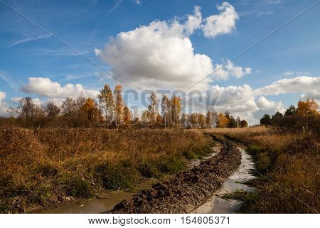 Country landscape with tracks filled with mud and puddles leading to horizon on sunny cloudy day in autumn