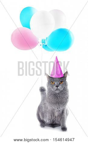 Funny cat in party cap with air balloons on white background