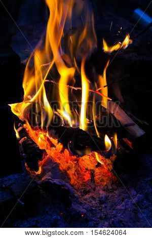 Flame of a campfire at the night