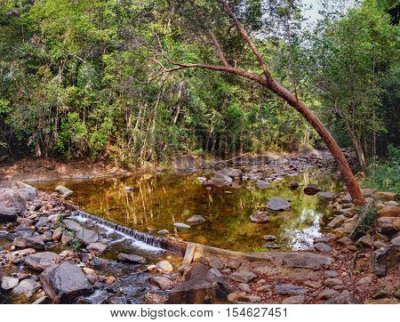 Small mountain stream in the shade of the tropical forest with snag tree in the foreground Mu Koh Chang National Park Thailand. View from the trail to the Khlong Phlu waterfall. Natural background.