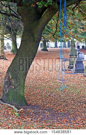 A childs homemade swing in a cemetery