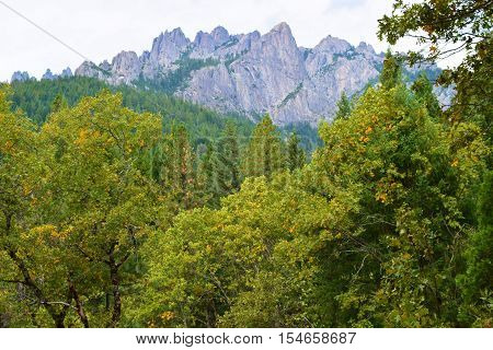 Lush green deciduous forest including mountains with granite rock slopes beyond taken at Castle Crags State Park near Mt Shasta, CA