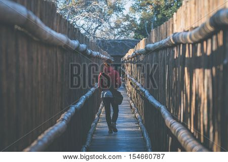 Woman walking in wooden narrow walkway. Protection for tourists in nature and wildlife reserve in South Africa. Concept of adventure and traveling people. Toned image.