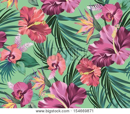 vector tropical pattern. Amazing exotic flowers. hibiscus, orchids, bird of paradise