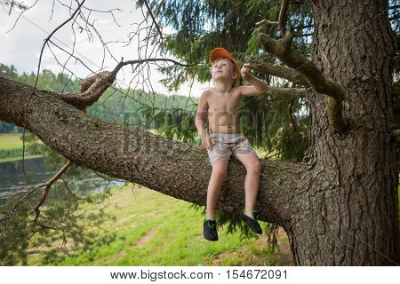 Little cute boy sits on tree branch and looks up near river at summer