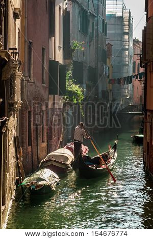 Gondolier in sunrise in Venice in hot summer