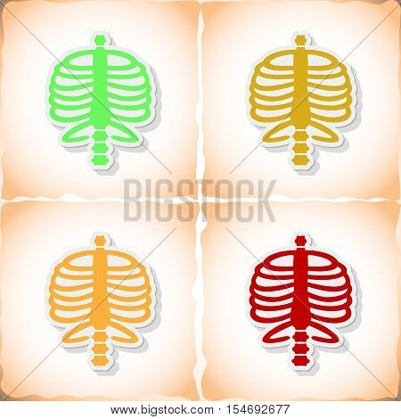 Human rib cage. Flat sticker with shadow on old paper. Vector illustration
