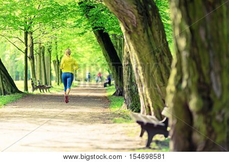Fit woman running and walking in beautiful city park. Young girl jogging in bright woods outdoors summer nature. Endurance concept with working out fitness and exercising in inspirational green woods landscape.