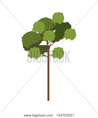 silhouette tree with leafy branches model six vector illustration
