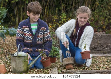 Two children boy and girl talking gardening and planting in vegetable patch together