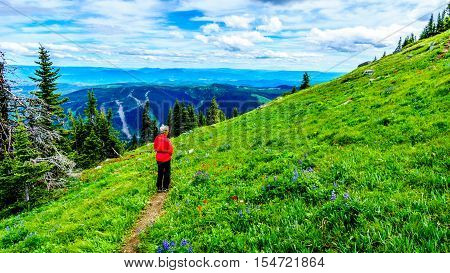 Senior Woman hiking through the Alpine Meadows of Tod Mountain in the Shuswap Highlands of central British Columbia