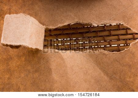 Brown Color Torn Notepaper