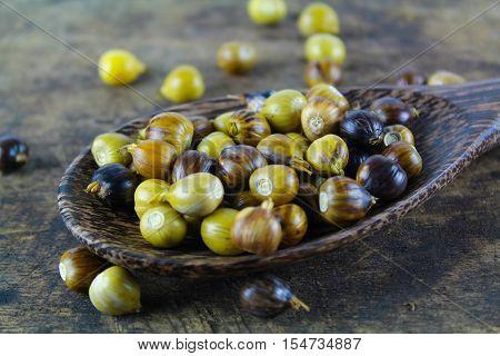 Job's tears ( coix lachryma-jobi ) of wild grass