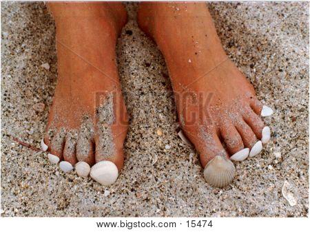 Seashell Toes