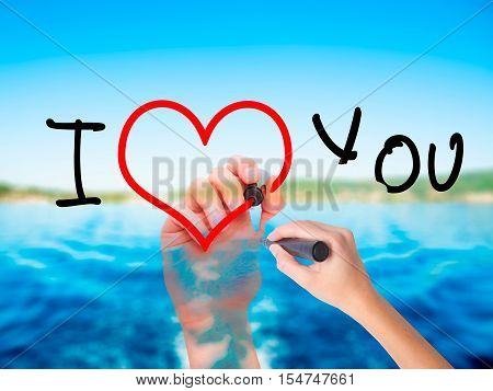 Woman Hand Writing I Love You  With A Marker Over Transparent Board