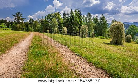 Country Road Between The Sheaves Of Hay