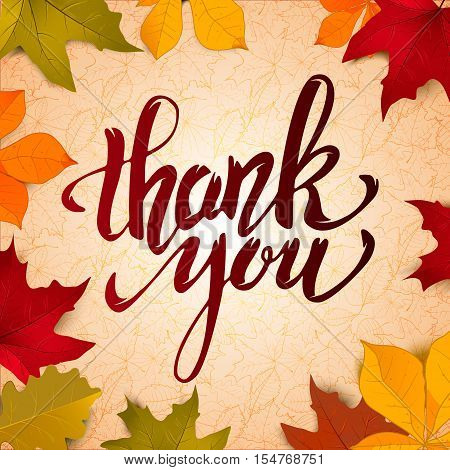 Thank You. Hand drawn lettering on light background yellow autumn leaves. Design elements for greeting card, flyer, poster. Vector illustration.