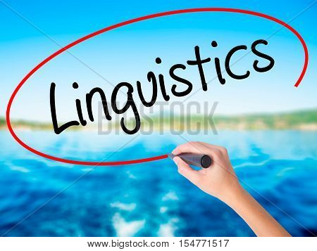 Woman Hand Writing Linguistics  With A Marker Over Transparent Board
