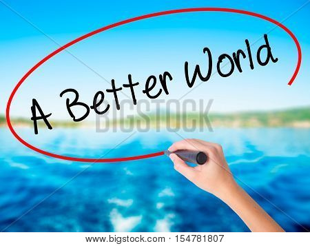 Woman Hand Writing A Better World With A Marker Over Transparent Board