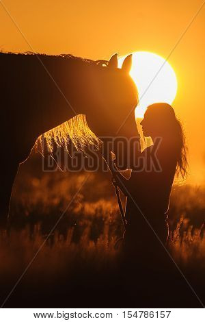 Girl and horse silhouette at sunset light