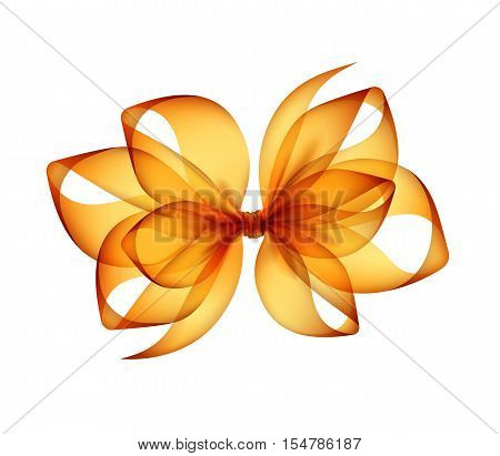 Vector Orange Yellow Transparent Bow Top View Close up Isolated on White Background