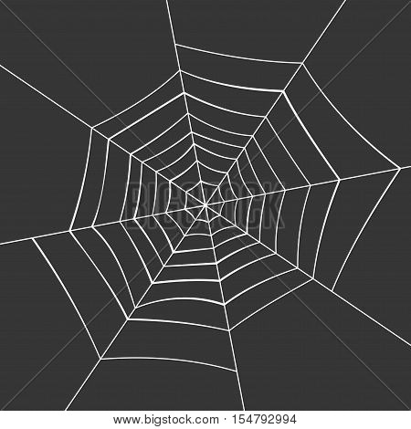 Spiderweb on a Black Background. Vector illustration