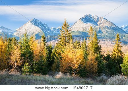 Autumn atmosphere and nice contrast between golden and green forest and blues of rocky mountains and sky. Higher peak called Gerlach is highest peak of Slovakia and whole Carpathians including High Tatras. Sunny fall day.