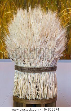 White Sheaf of Wheat Ripe Ears Wheat Set