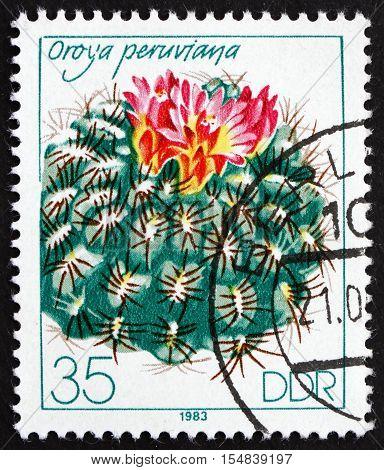 GERMANY - CIRCA 1983: a stamp printed in Germany shows Oroya Peruviana Flowering Cacti circa 1983