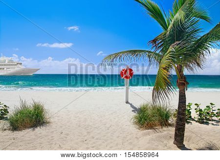 Tropical beach with palm tree and cruise ships in distance