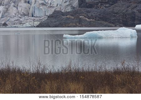 Icebergs are seen in Mendenhall Lake with continuing retreat of Mendenhall Glacier in Juneau Alaska. Horizontal image taken on November 9 2014. Climate change continues to reduce alpine glaciers.