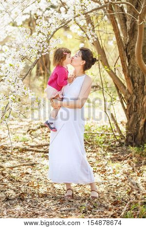 Portrait of caucasian pregnant mother in long white open dress holding and kissing her daughter in pink clothes on a spring summer day in the park outside among blooming cherry trees