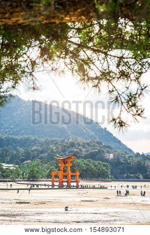 MIYAJIMA JAPAN - MARCH 25 2016: Tourists walk around the famous floating torii gate - Itsukushima Shrine Miyajima