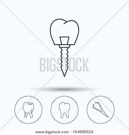Dental implant, caries and tooth icons. Tweezers linear sign. Linear icons in circle buttons. Flat web symbols. Vector