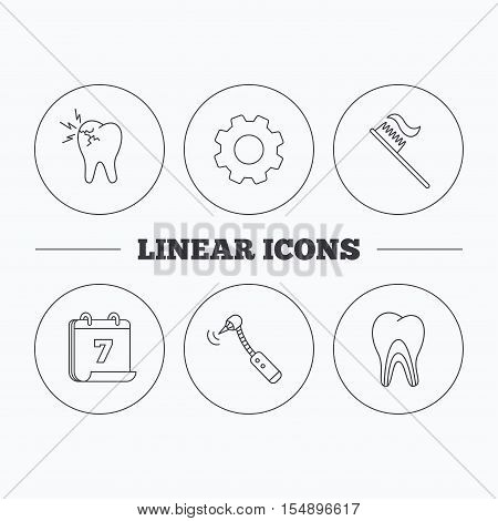 Toothache, drilling tool and toothbrush icons. Dentinal tubules linear sign. Flat cogwheel and calendar symbols. Linear icons in circle buttons. Vector