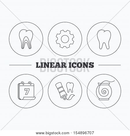 Tooth, dentinal tubules and dental floss icons. Toothpaste linear sign. Flat cogwheel and calendar symbols. Linear icons in circle buttons. Vector