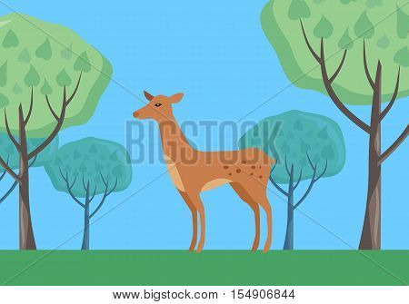 Young fallow deer female in forest on national park with trees behind. Flat style vector. European nature beauty. For travel, nature concept, habitat illustrating. Wildlife and environment concept